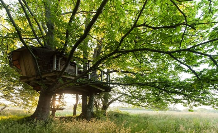 Tree House Hotel In France Folenn Log Cabin Tree House