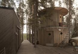 Treehotel in Sweden: The Tree Sauna