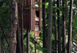 Treehouse in Canada: The 4treehouse