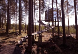 Treehotels in Sweden: Overview