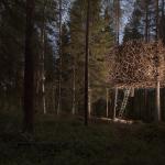 treehotel sweden Bird's Nest