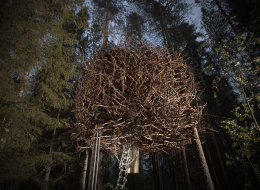 Treehotel in Sweden: The Bird's Nest