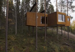 Treehotel in Sweden: The Dragonfly