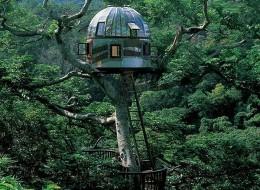 Treehotel in Japan: the Beach Rock treehouse