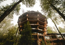 Tree house hotel in Chile: Nothofagus Hotel & Spa