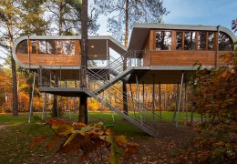 Treehouse in Belgium: The Treehouse