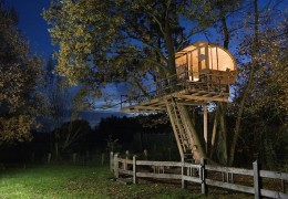 Treehouse in Germany: Between Alder And Oak