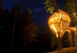 Treehouse in New Zealand: Yellow Treehouse Cafe