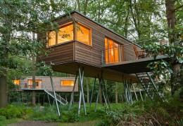 Treehotel in Germany: Baumgeflüster