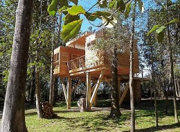 Treehotel in the US: Coldwater treehouse