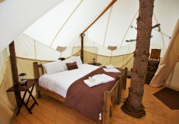 Tree house hotel in the US: Glacier Under Canvas Treehouse