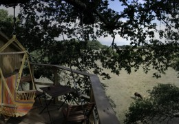 Tree house hotel in France: Nijal treehouse