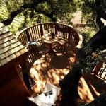 above deck view at La Piantata Black Cabin Treehouse
