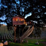 outside view at night of La Piantata Black Cabin Treehouse