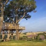 outside view from La Piantata Black Cabin Treehouse