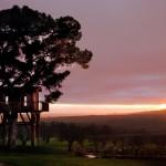 sunset at La Piantata Black Cabin Treehouse