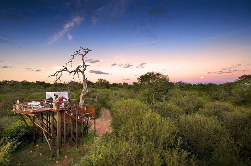Tree house hotel in South Africa: Lion Sands Chalkley Treehouse