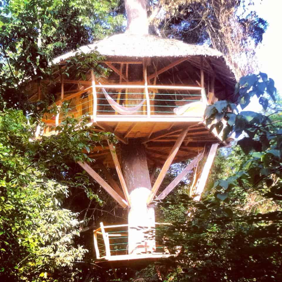 Tree House Hotel In Sri Lanka  Traveller U0026 39 S Hideout In