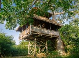 Tree house hotel in Tanzania: NNE Treehouse
