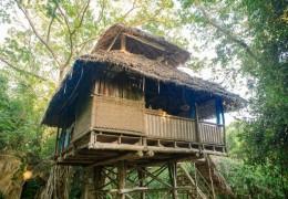 Tree house hotel in Tanzania: TANO Treehouse