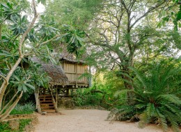 Tree house hotel in Tanzania: TATU Treehouse