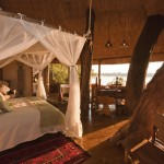 Luxury treehotel in Zambia africa