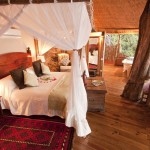 Luxury treehotel bedroom in africa