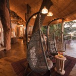 Luxury treehotel terrace in africa