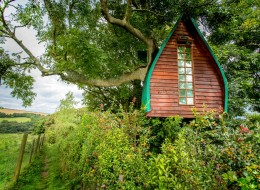 Tree house hotel in the UK: Tree Sparrow House
