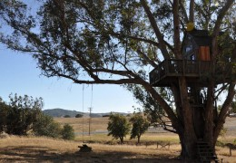 Tree house hotel in the US: Swallowtail Studios Tree House
