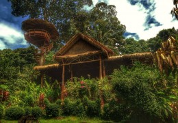 Treehouse Café & Restaurant in Thailand: Oasis Koh Chang