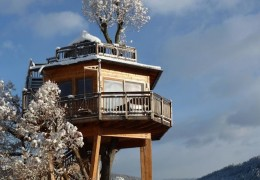 Tree house hotel in Austria: Hotel Prechtlhof Treehouse