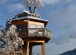 Tree house hotel in Austria: Hotel Prechtlhof Treehouse