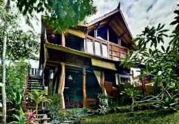Tree house hotel in Indonesia: Charming Hideaway in Bali