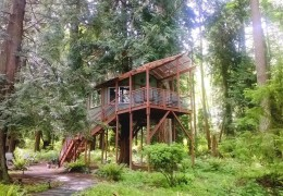 Tree house hotel in the US: Whidbey Island Tree House Suite