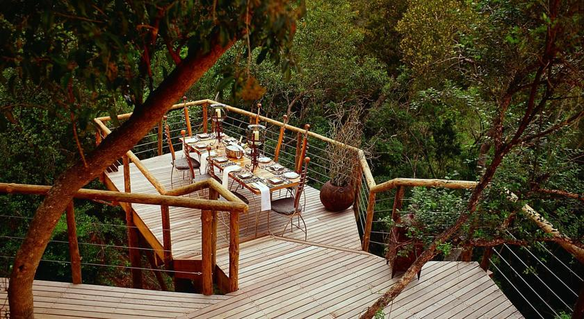 Treehouse Hotel In South Africa  Tsala Treetop Lodge